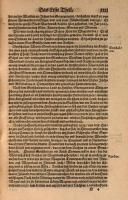 Голштинская хроника стр 31.jpg
