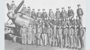 335 эскадрилья.png