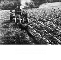 Первый трактор в колхозе. Тамбовская обл 1929г.jpg