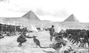 During the British occupation of Egypt a platoon of Australian soldiers one of them playing with a Kangaroo, their camp was close to Mena House..png